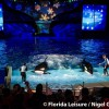 SeaWorld Orlando is still the best theme park in Orlando at Christmas!