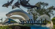 Celebrate 4th July at SeaWorld Orlando