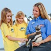 SeaWorld Camps offer up-close animal experiences for children this Summer