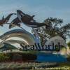 SeaWorld Entertainment, Inc. Announces Support for  The National Fish and Wildlife Foundation's  Killer Whale Research and Conservation Program