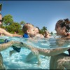 Aquatica, SeaWorld's Waterpark, hosts the World's Largest Swimming Lesson