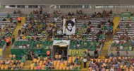 Tampa Bay Rowdies continue losing streak with 3-1 home defeat to Minnesota
