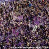 Orlando City Soccer starts 2018 against DC United