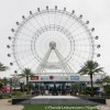 Capsules of Love: Orlando Eye Hosts Weddings 400 Feet in the Air