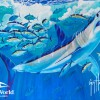 SeaWorld & Guy Harvey partner for ocean health and shark conservation