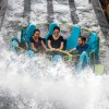 """SeaWorld kicks off 2019 """"Best Year Ever"""" and debuts new pass program"""