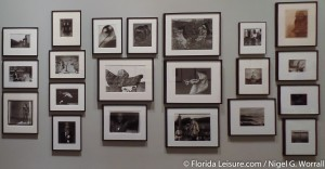St. Petersburg Museum of Fine Arts, St. Petersburg, Florida - 22nd August 2015  (Photographer: Nigel G Worrall)